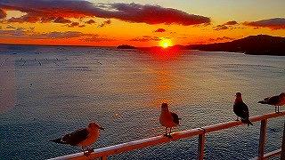 南三陸 復興の夜明け